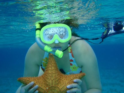 Snorkeling in Serenity Bay - Holding a starfish